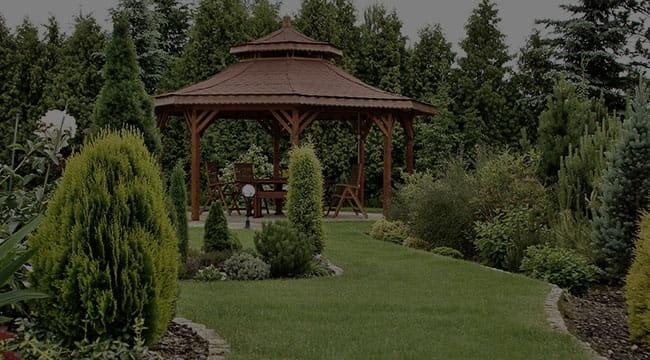 Issaquah Garden Design