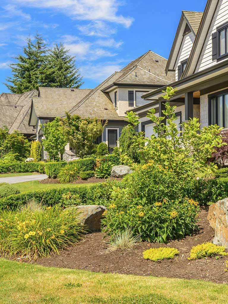 Landscaping Company Landscape Design